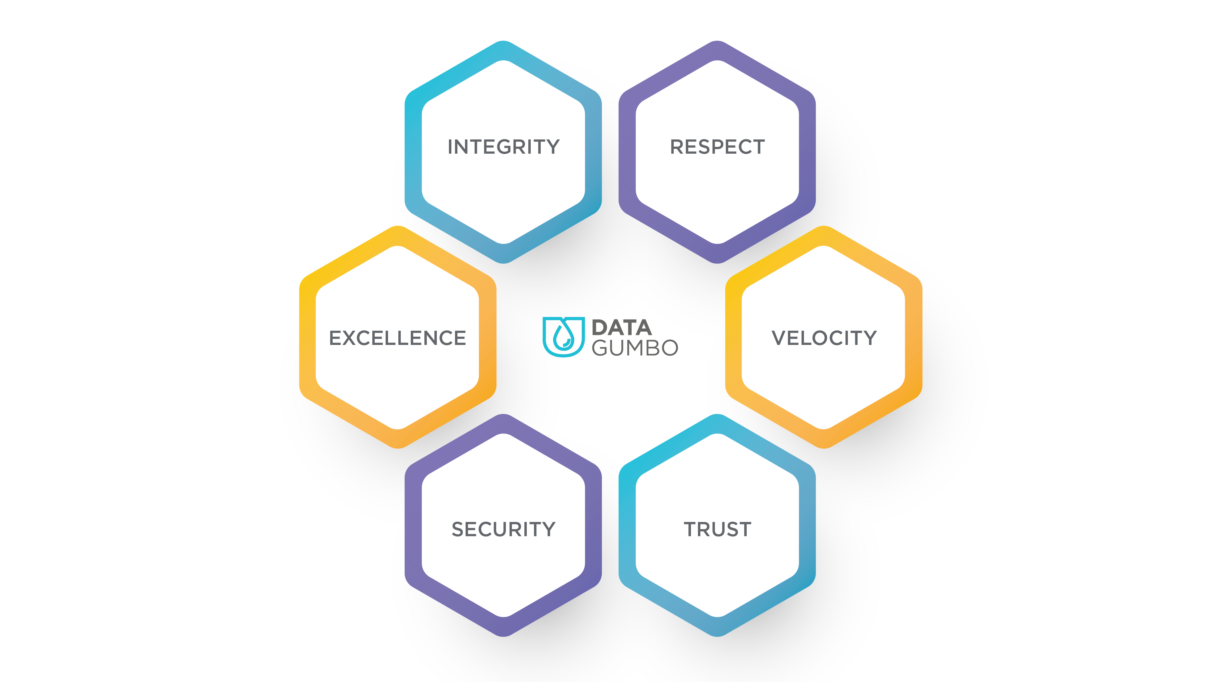 Data Gumbo values integrity respect excellence velocity security trust